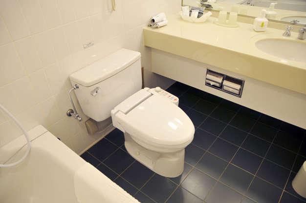 21 枚のスライドの 9 枚目: It is a Japanese-made toilet