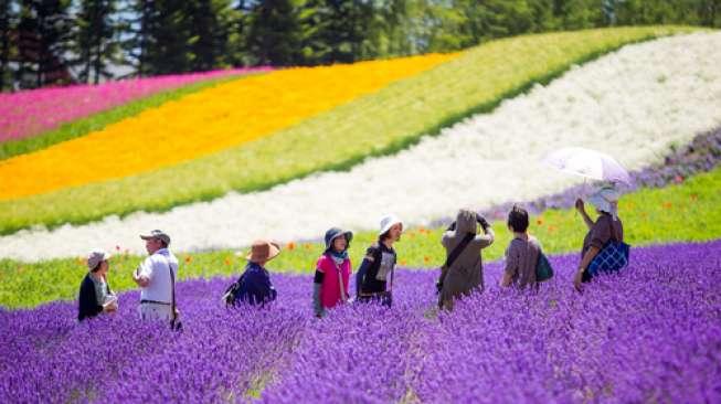Hokkaido, Destinasi dengan Sejuta Daya Tarik