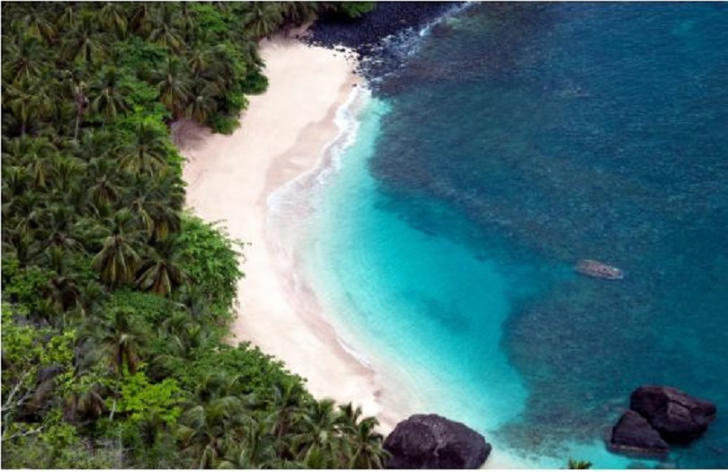 Trees cover almost 90 per cent of the archipelago