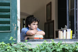 "Szene aus ""Call me by your name"""