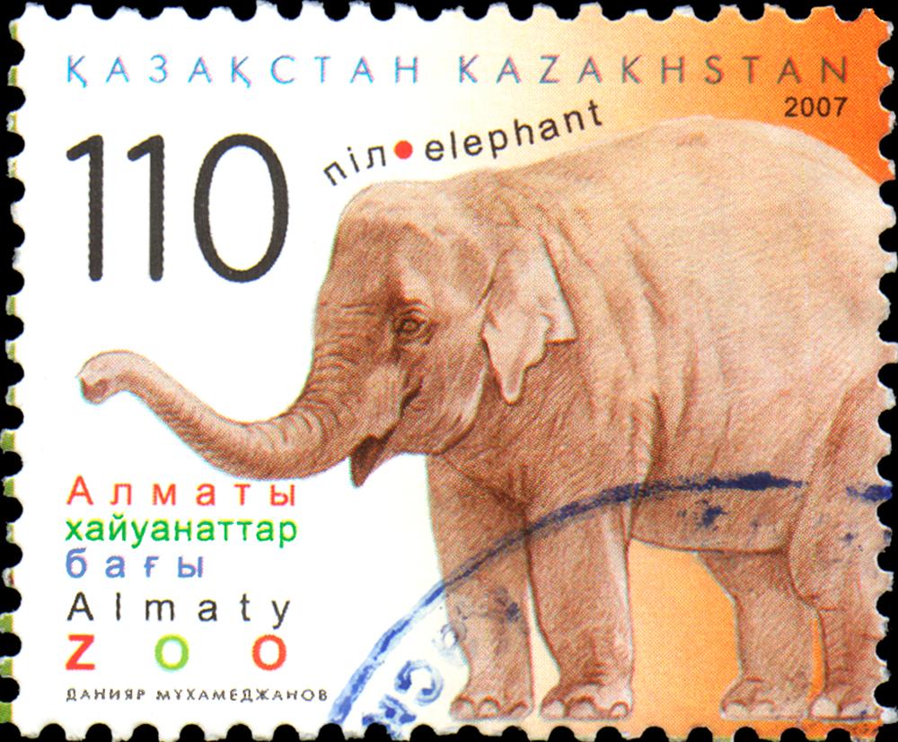 "Slide 60 of 70: KAZAKHSTAN - CIRCA 2007: Postal stamp printed in Kazakhstan shows elephant. ""Almaty Zoo"" Series"