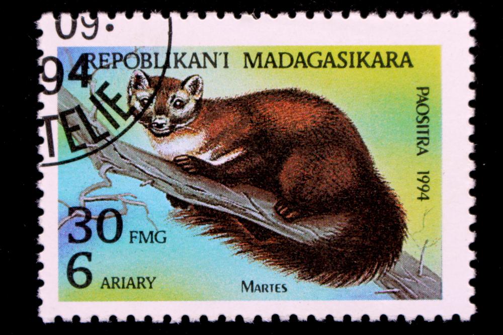 Slide 34 of 70: A stamp printed in Madagaskar shows wild Animals, circa 1994