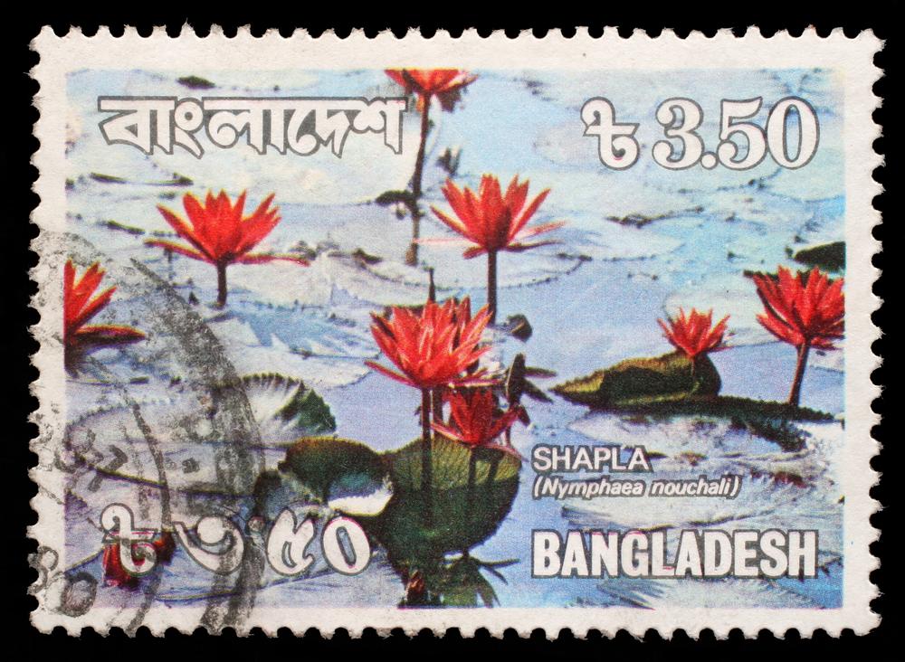 Slide 38 of 70: BANGLADESH - CIRCA 1990: A stmp printed in Bangladesh shows water lilies, circa 1990