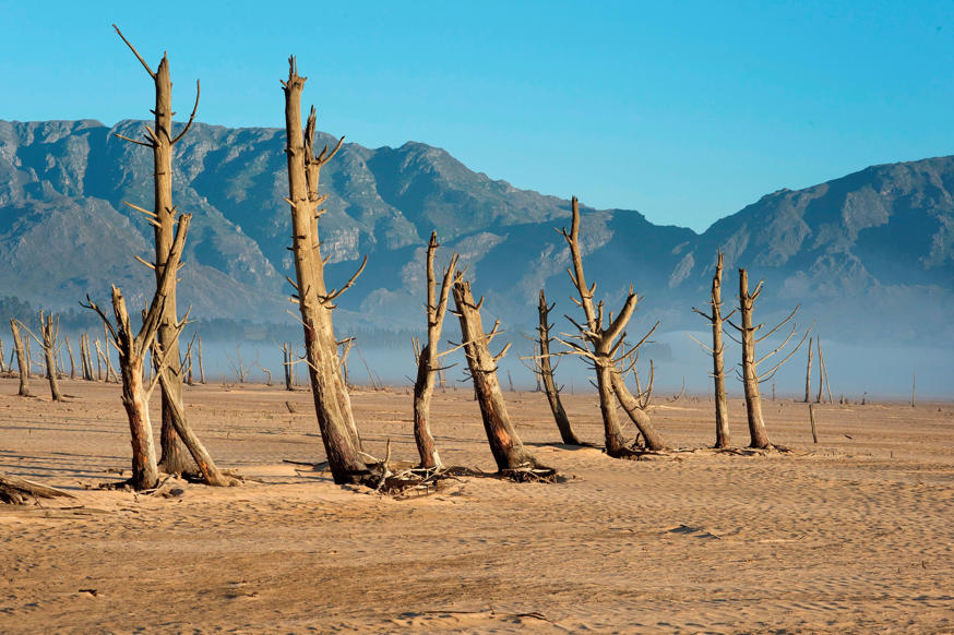 Slide 2 of 25: A picture taken on May 10, 2017 shows bare sand and dried tree trunks standing out at Theewaterskloof Dam, which has less than 20% of it's water capacity, near Villiersdorp, about 108km from Cape Town. South Africa's Western Cape region which includes Cape Town declared a drought disaster on May 22 as the province battled its worst water shortages for 113 years. This dam is the main water source for the city of Cape Town, and there is only 10% of it's usual capacity left for human consumption, at the last 10% is not useable, due to the silt content. / AFP PHOTO / Rodger BOSCH (Photo credit should read RODGER BOSCH/AFP/Getty Images)