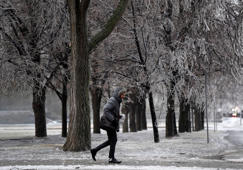 A man passes ice laden trees as a storm brings freezing rain in Ottawa on Monday, April 16, 2018.