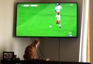 Cat enthusiastically watches soccer game on TV