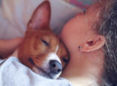 Here's why you shouldn't sleep with your dog