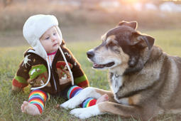 An adorable 8 month old baby girl is bundled up in a sweater and bomber hat looking lovinlgy at her pet German Shepherd dog as they sit ouside on a cold fall day.