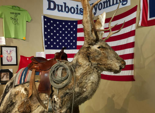 Slide 1 of 51: A hybrid of a jackrabbit and an antelope, a jackalope is a cowboy legend in Wyoming, and the town of Dubois has a museum dedicated to it. Located inside a gas station, you'll find some info about the jackalope, as well as snacks, ice cream, and souvenirs. Keep an eye out for the giant jackalope outside the store. Next, find out these 50 fascinating facts you never knew about the United States.