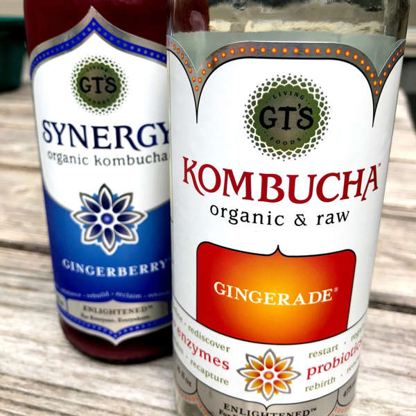 Can You Get Drunk Off Kombucha I Drank Kombucha Every Day For A Week And This Is What My Gut Has To Say About It