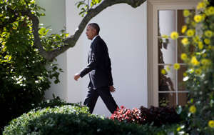 a man standing in front of a flower: President Barack Obama in August 2016 at the White House. In the weeks after Donald J. Trump's election, Mr. Obama went through multiple emotional stages, according to a new book by his longtime adviser, Benjamin J. Rhodes.