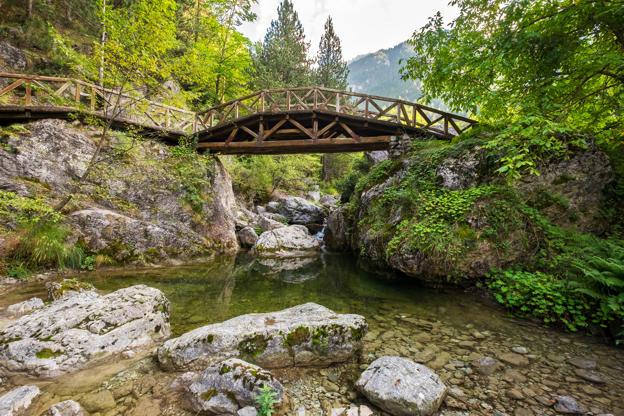 Διαφάνεια 1 από 35: Wooden bridge over a river in the mountains of Olympus. Prionia, Greece