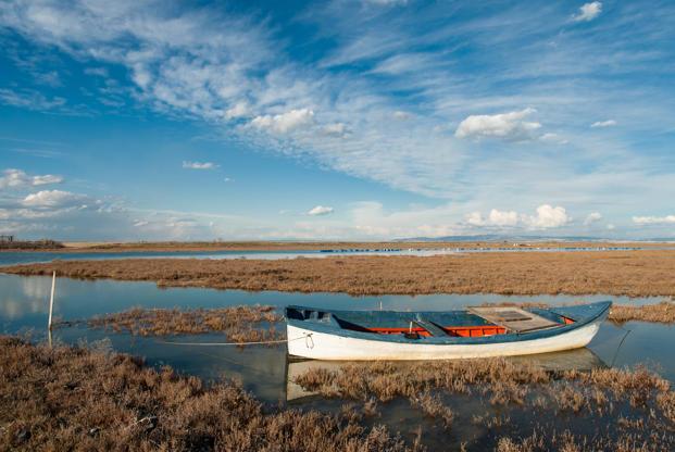 Διαφάνεια 18 από 35: Landscape with traditional wooden boat in Axios Delta, near Thessaloniki, Greece. Axios or Vardar is the second largest river in the Balkans.