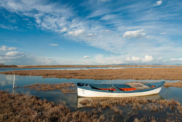 Διαφάνεια 18 από 35: Landscape with traditional wooden boat in Axios Delta, near Thessaloniki, Greece. Axios or Vardar is the second largest river in the Balkans.