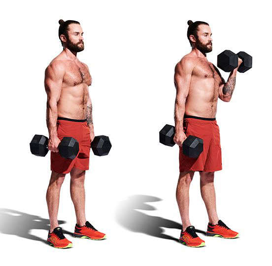 a group of people posing for the camera: Weights, Exercise equipment, Shoulder, Arm, Dumbbell, Muscle, Standing, Barbell, Sports equipment, Biceps curl,