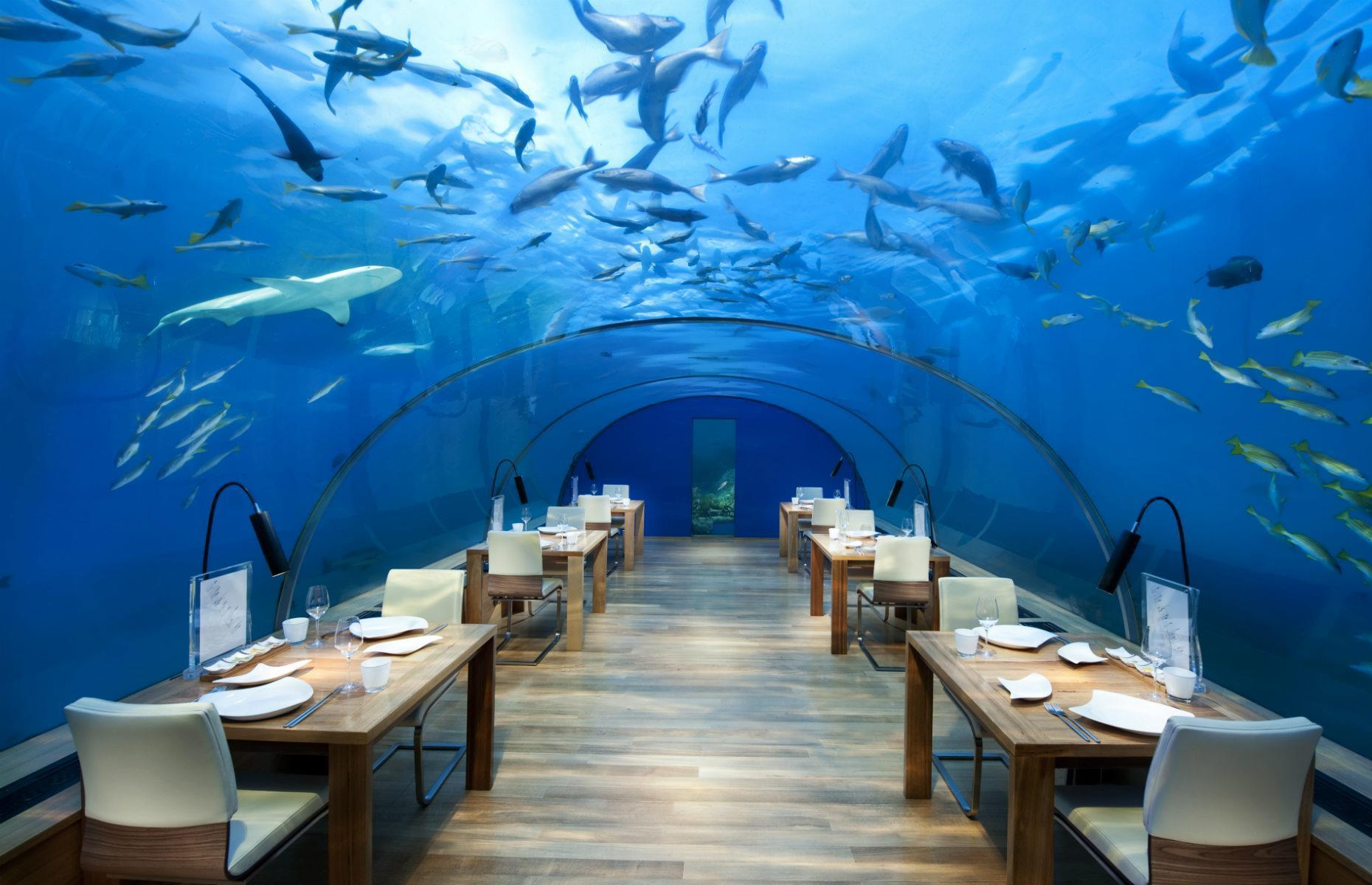 Slide 29 of 31: Built in 2005, this place set the benchmark for underwater luxury. At the Conrad Maldives Rangali Island's restaurant Ithaa, the world's first all-glass underwater restaurant, there's no need to worry about booking the best seat in the house – the panoramic windows ensure all 14 guests usually have a magnificent experience. Submerged 16 feet (5m) below sea level, this high-class restaurant promises sophisticated cuisine paired with once-in-a-lifetime ocean views. The Maldives is set to welcome back tourists during July 2020 and you can discover more countries reopening to tourists here.