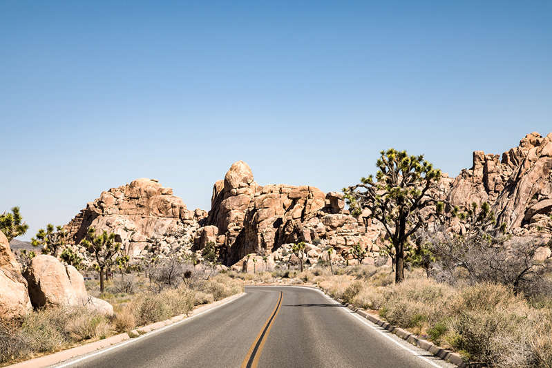 a person riding on top of a mountain road: Some of California's most stunning scenery isn't along the coasts, it's in Joshua Tree National Park and other desert areas.