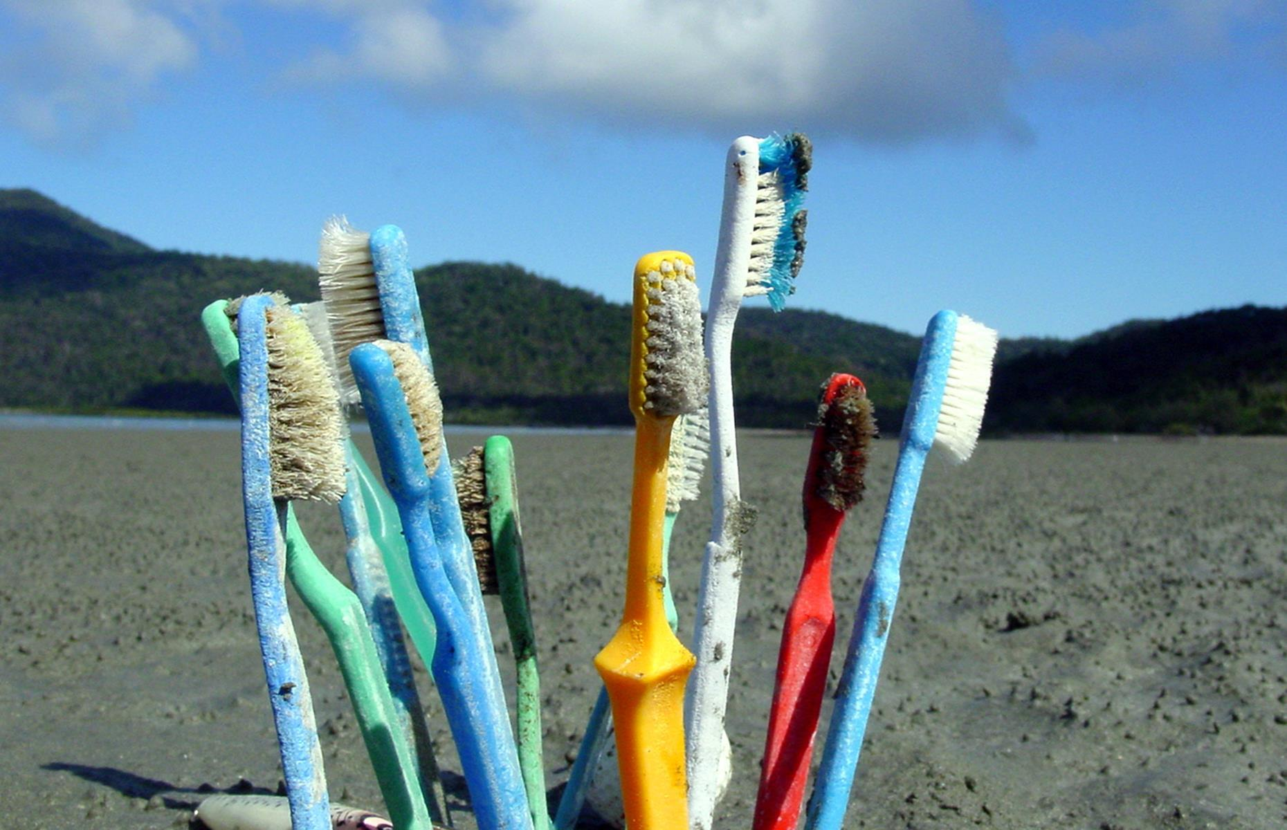 Slide 20 of 33: Unfortunately, washed-up plastic on beaches is far from a strange sight but a bizarre number of worn toothbrushes were found at Genesta Bay in Queensland's Whitsunday Islands. These were collected by a skipper at eco-resort The Whitsunday Wilderness Lodge as part of its clean-up excursions. Take a look at more natural wonders facing a perilous future.