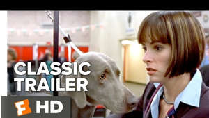 a dog looking at the camera: Starring:  Fred Willard, Eugene Levy, Catherine O'Hara Best in Show (2000) Official Trailer - Catherine O'Hara Movie  A colorful array of characters compete at a national dog show.  Subscribe to CLASSIC TRAILERS: http://bit.ly/1u43jDe Subscribe to TRAILERS: http://bit.ly/sxaw6h Subscribe to COMING SOON: http://bit.ly/H2vZUn Like us on FACEBOOK: http://bit.ly/1QyRMsE Follow us on TWITTER: http://bit.ly/1ghOWmt  Welcome to the Fandango MOVIECLIPS Trailer Vault Channel. Where trailers from the past, from recent to long ago, from a time before YouTube, can be enjoyed by all. We search near and far for original movie trailer from all decades. Feel free to send us your trailer requests and we will do our best to hunt it down.