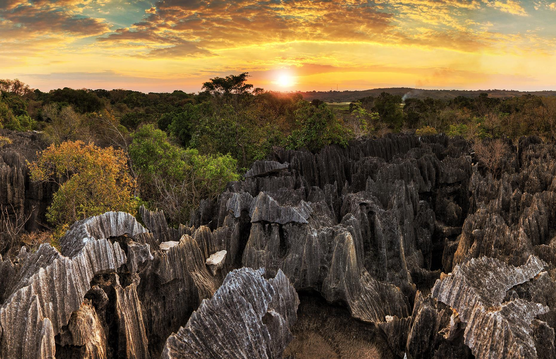 Slide 19 of 44: It's hardly surprising that this labyrinth of needle-shaped rock formations remains largely unexplored. Except for a few trails, bridges and viewpoints, much of this national park in Madagascar is untouched by humans.