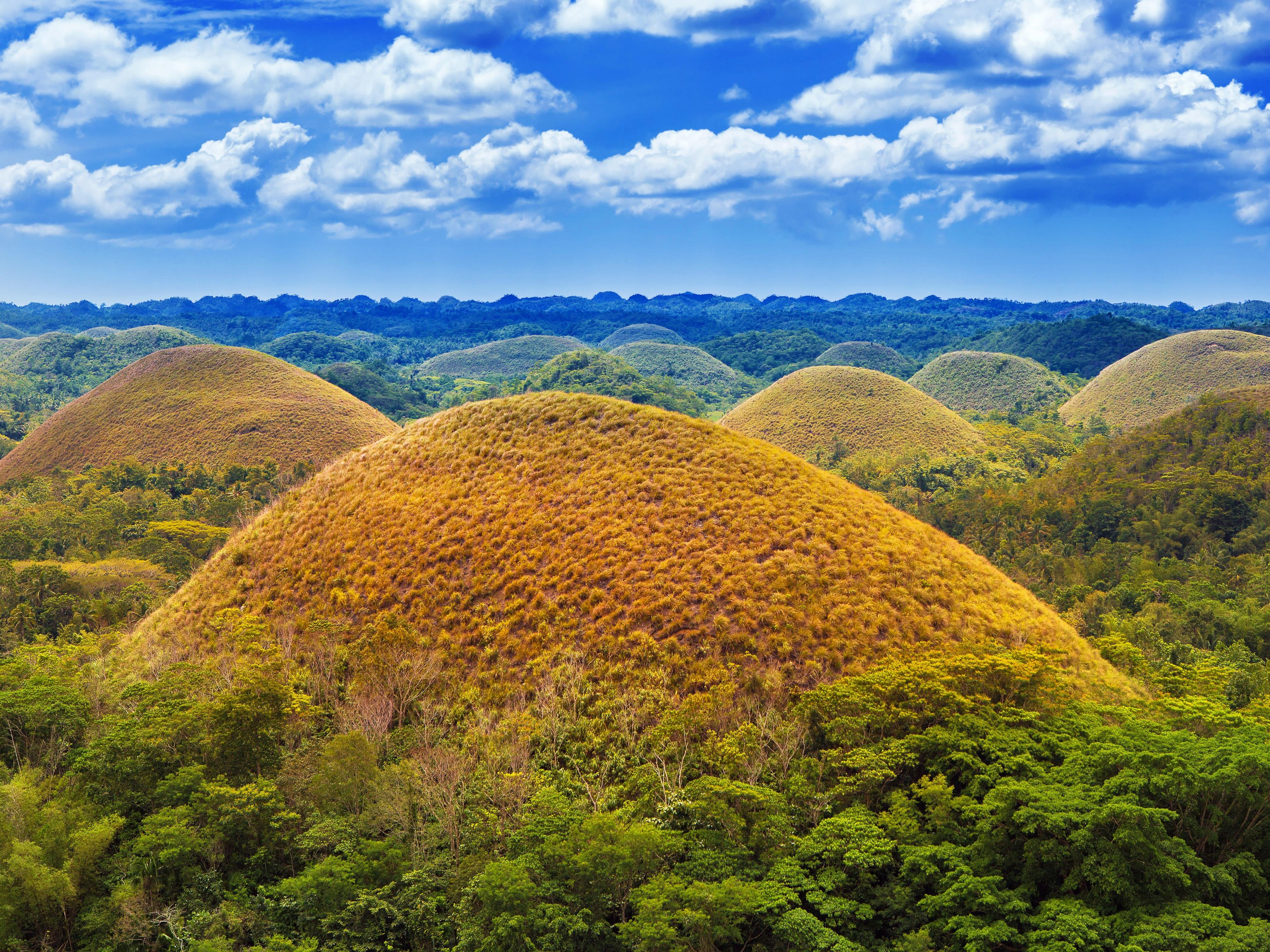 Slide 15 of 51: Varying in height from 98 feet to 393 feet, the Chocolate Hills are known for their odd cone shapes. During dry season, the grass turns a distinct brown color, reminiscent of chocolate. There are more than 1,268 cone-shaped hills covering an area of 31 miles.