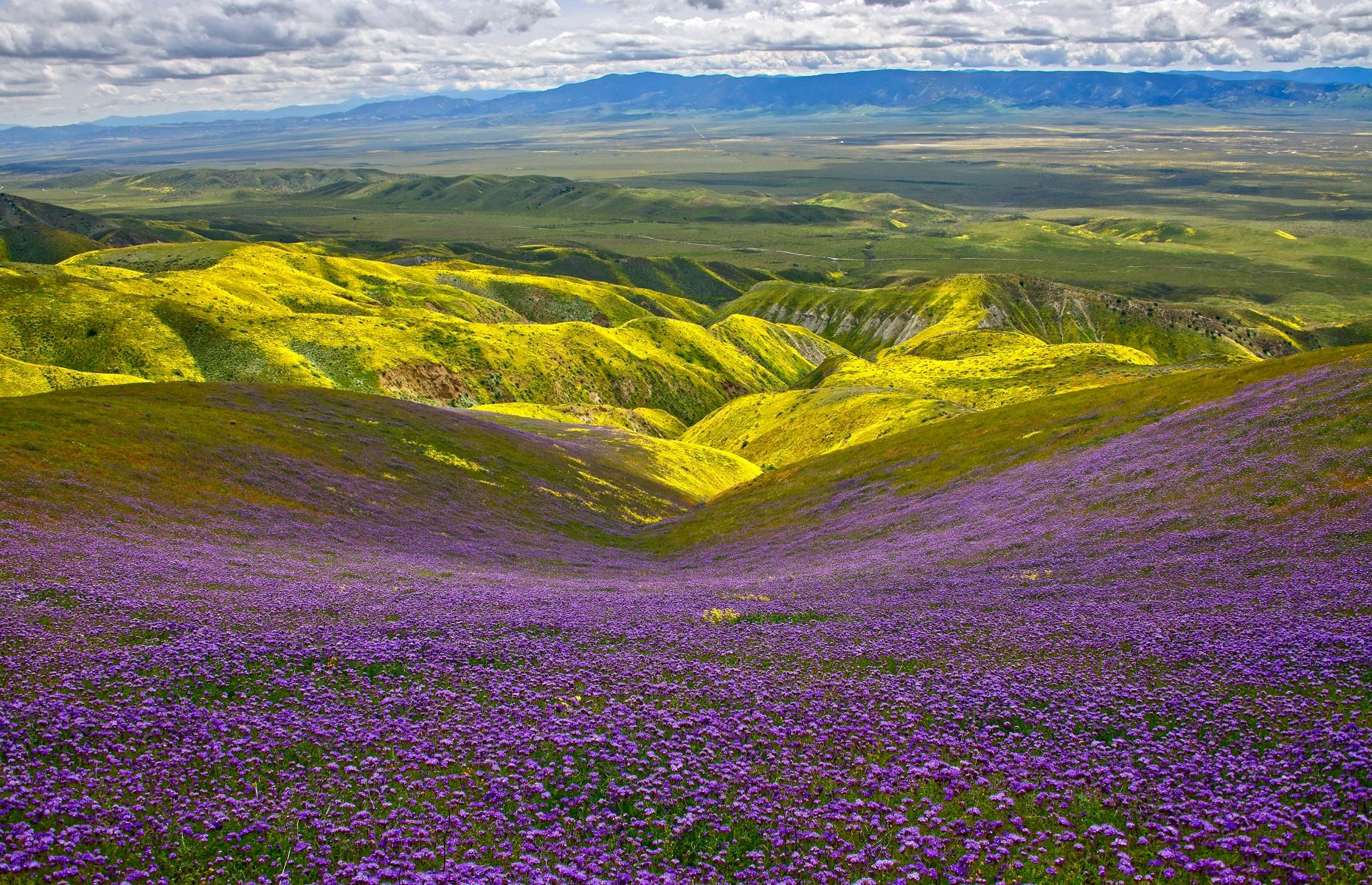Slide 32 of 59: You might not normally consider plains to be natural wonders but this one in California might change your mind. Carrizo Plain National Monument, in San Luis Obispo County, is the largest single native grassland remaining in the state of California. Covering more than 200,000 acres, the landscape is considered one of the best kept secrets in America and boasts alkali flats, vast open fields and wildflowers every spring.