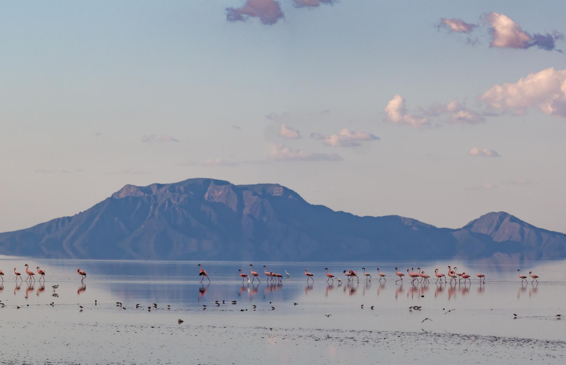 Slide 28 of 51: Flamingos and the nearby Ol Doinyo Lengai mountain make this lake in Tanzania's Gregory Rift look like an idyllic spot. However, Lake Natron is a very dangerous place for a swim.