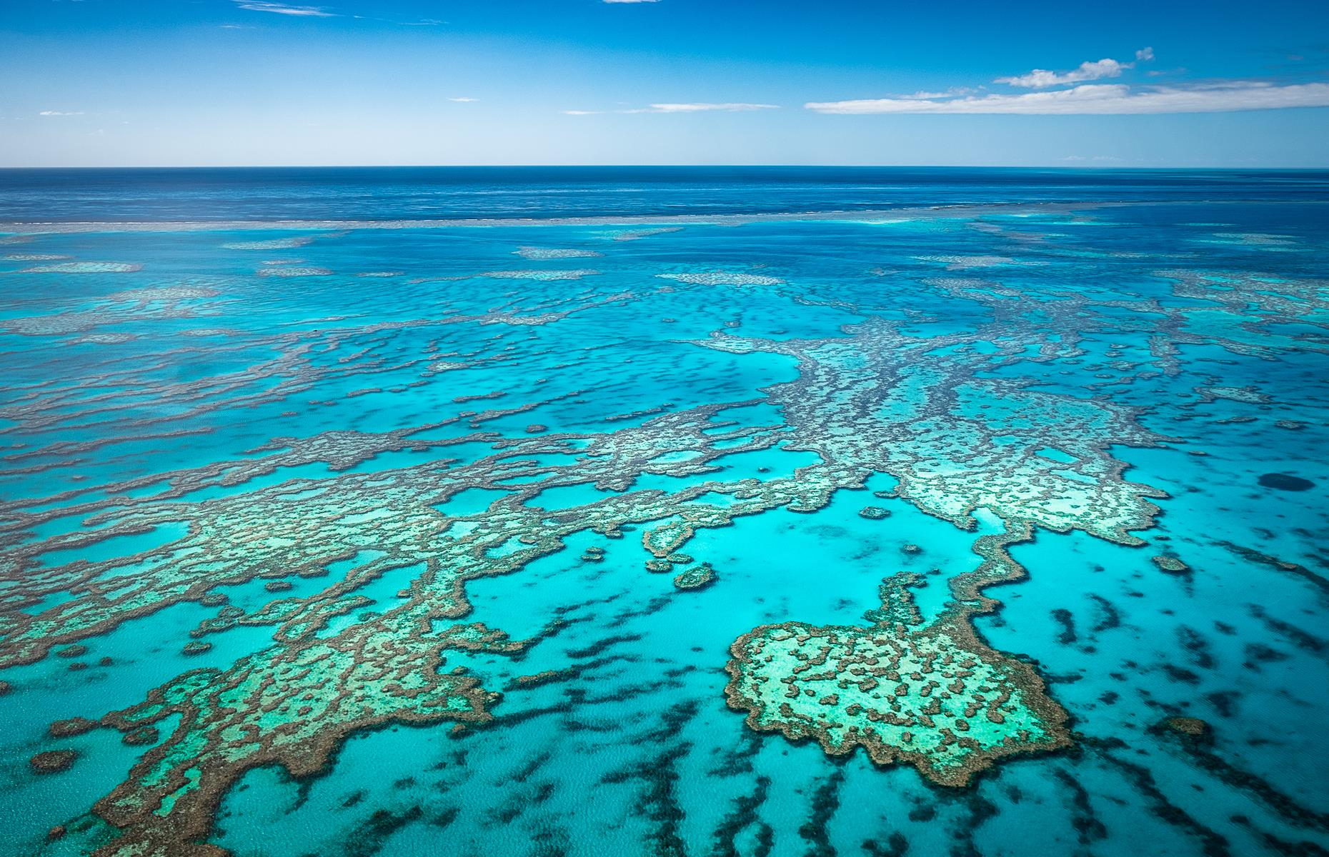 Slide 2 of 30: The Great Barrier Reef is famously so vast it can be viewed from space. It looks good both underwater and from dry land. It's the world's largest reef system, made up of nearly 3,000 reefs and encompassing more than 135,000 square miles (350,000sq km). It's also home to whales, dolphins, sea turtles and thousands of species of fish. Even without all that, the dazzling, dappled expanse of blue is pretty lovely to look at.