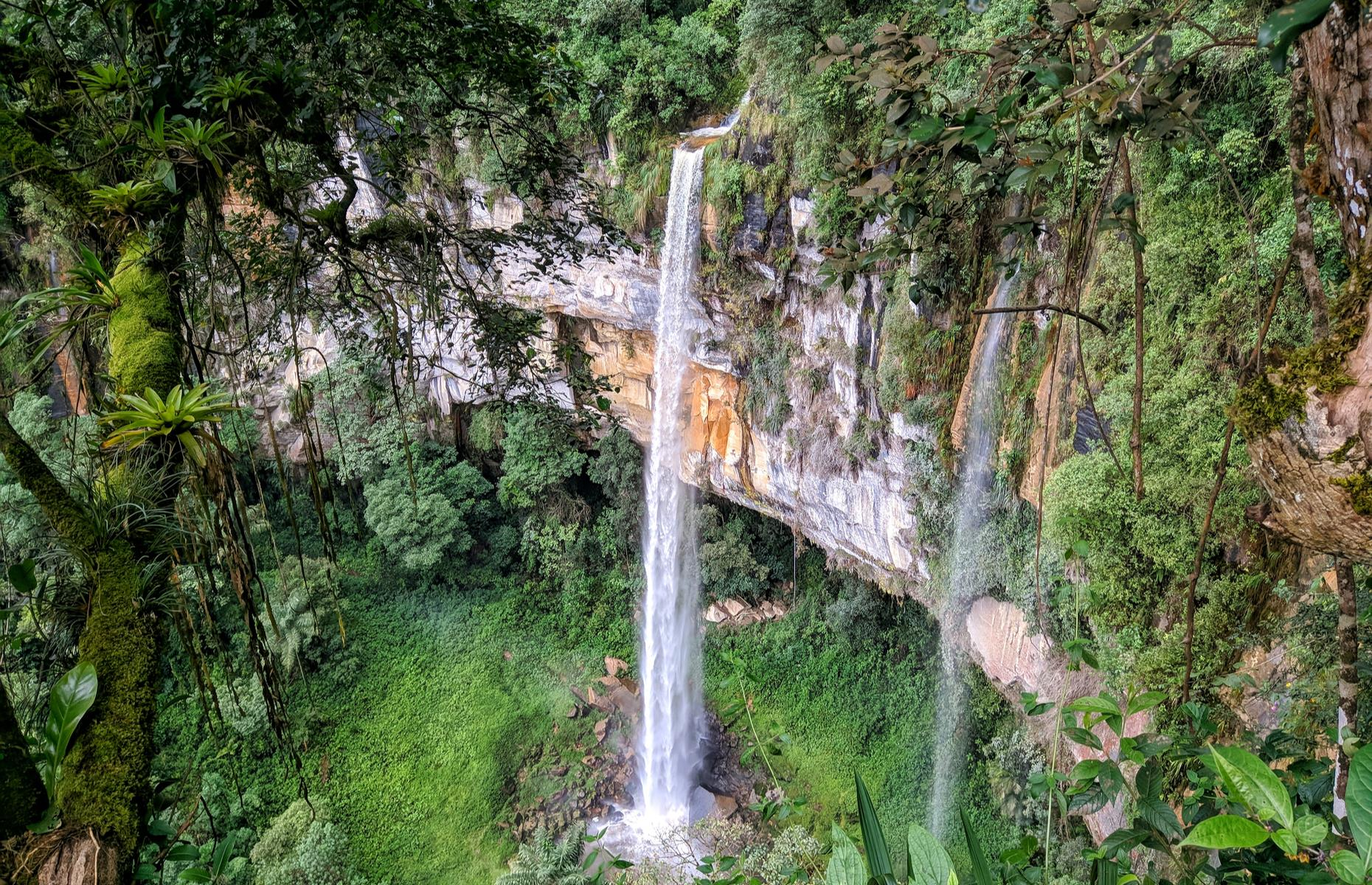 Slide 8 of 31: One of the world's largest waterfalls is tucked deep in the Bosque de Cataratas Gigantes de Cuispes – which, appropriately, translates as Forest of Gigantic Waterfalls of Cuispes – near the town of Chachapoyas. At nearly 3,000 feet (914m) high, it's an extraordinary sight with its silvery cascade surrounded by verdant, tangled jungle.