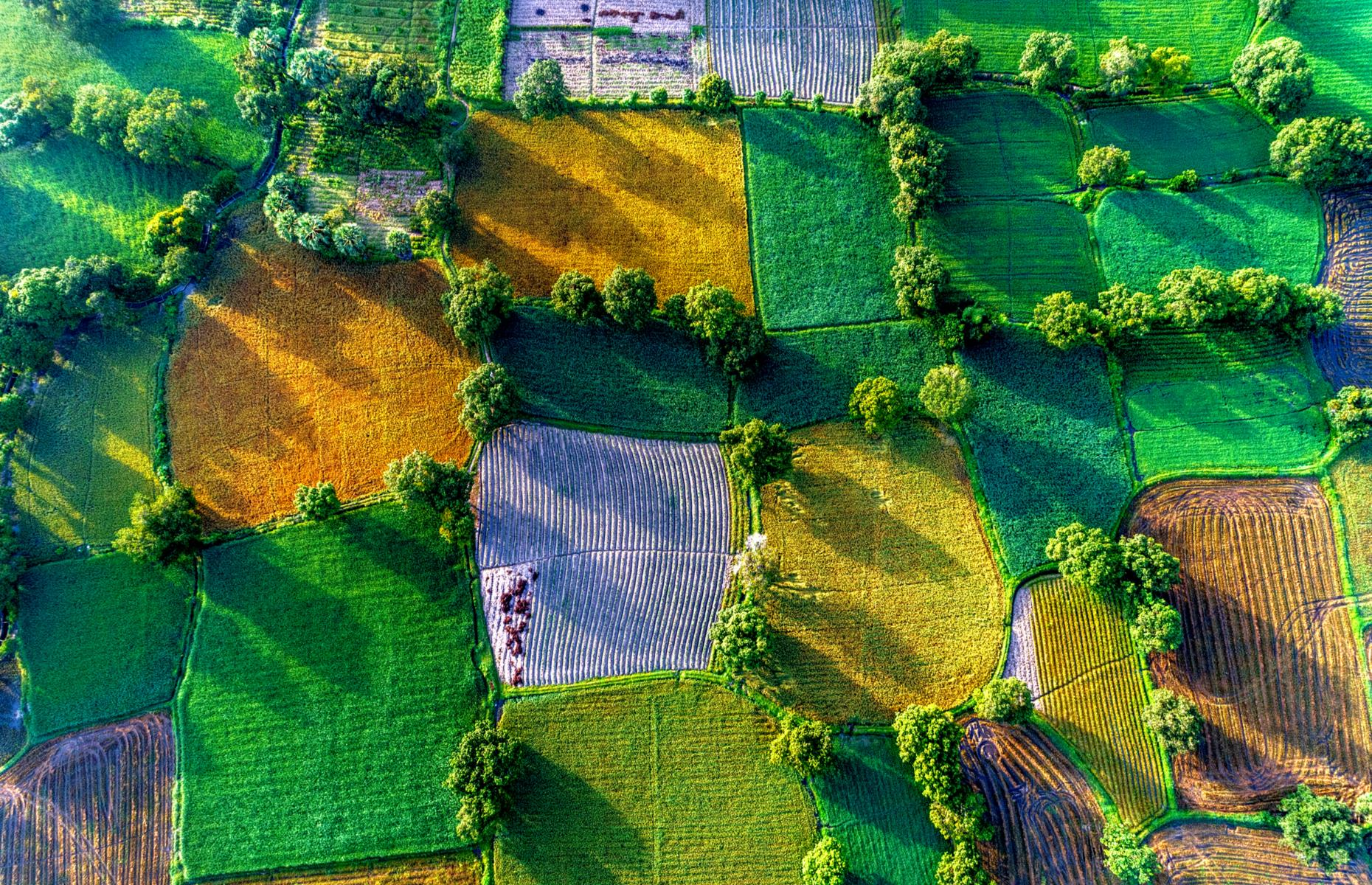 Slide 33 of 43: This colorful tapestry of rice paddies can be found in the rural district of Tri Tôn in Vietnam's An Giang province. The fields – a velvety jigsaw of emerald, shamrock and gold – spread out across the Mekong Delta and look spectacular from up high.