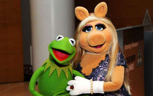 a face shot of a stuffed toy: Kermit the Frog and Miss Piggy