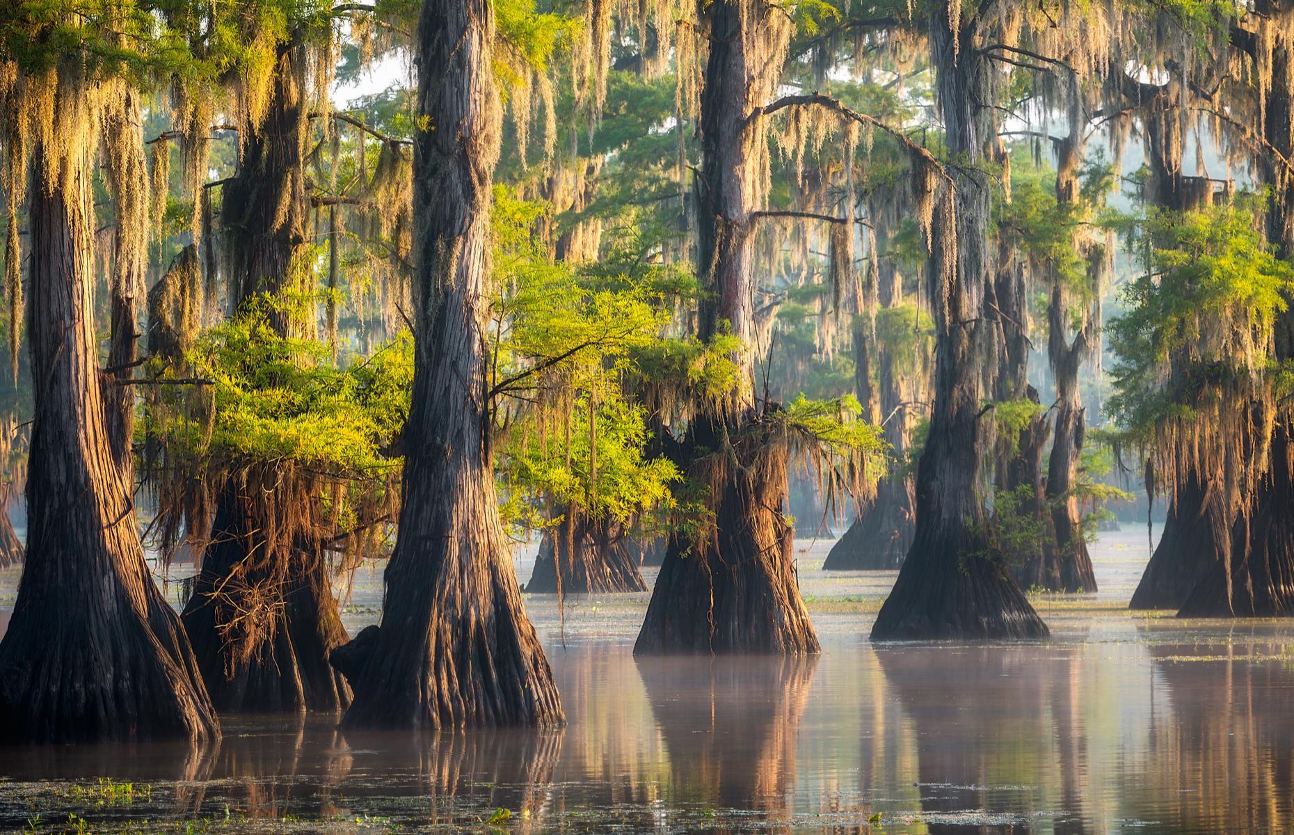 Slide 9 of 32: This tucked-away Texan spot hugs the state's border with Louisiana. It's an ethereal mix of swampy bayous, ponds and cypress trees, which drip with Spanish moss. Their broad, knotted trunks are submerged in the water. Discover more of America's most stunning lakes.