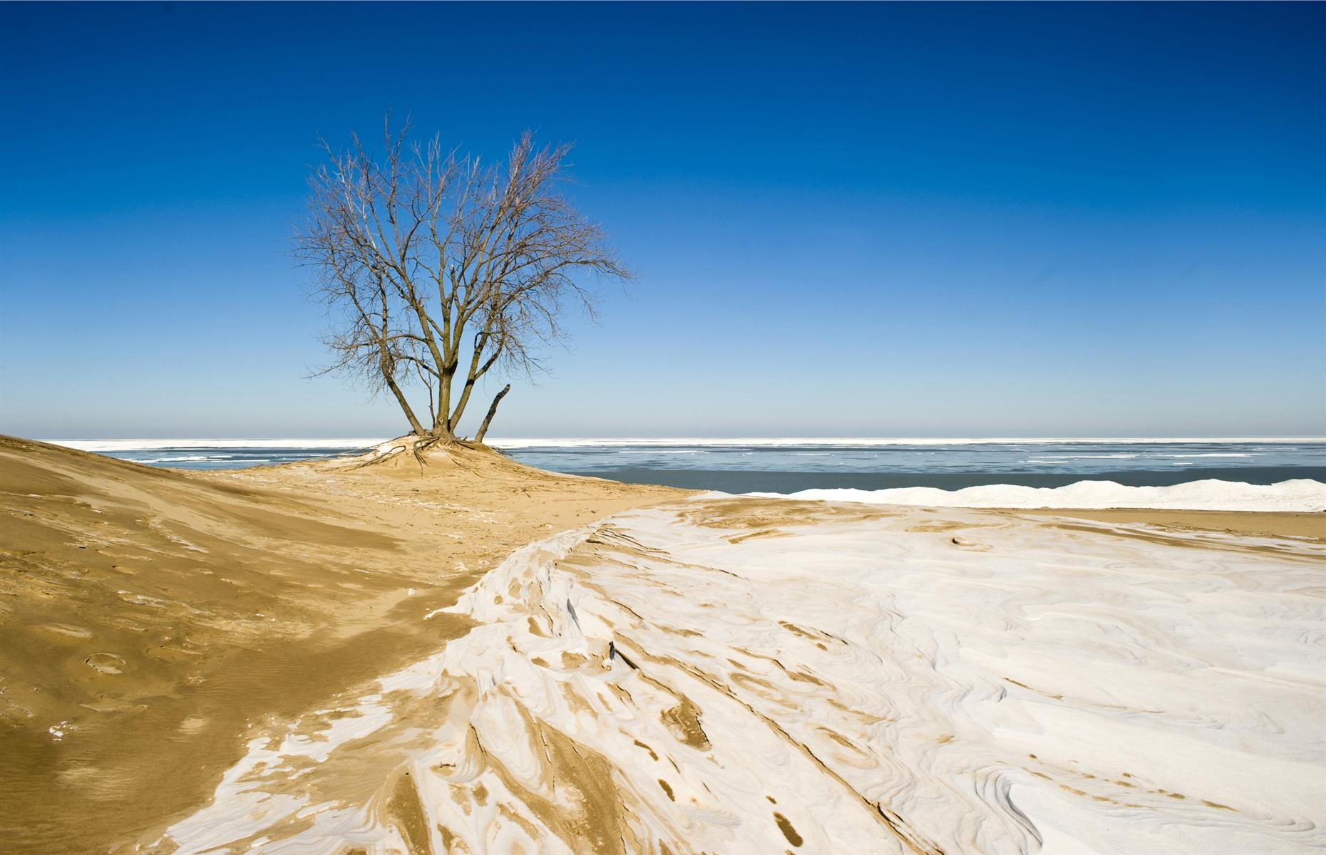 Slide 83 of 100: One of the USA's newest national parks, Indiana Dunes was designated in 2019. The park spreads over 15,000 acres encompassing, as its name suggests, endless dunes, some rising more than 100 feet (30m). But there's more than just sandy mountains in this preserve. Marshes, swamps, prairies and oak savannah come together to make one of the USA's most diverse ecosystems, home to species from deer to coyotes.