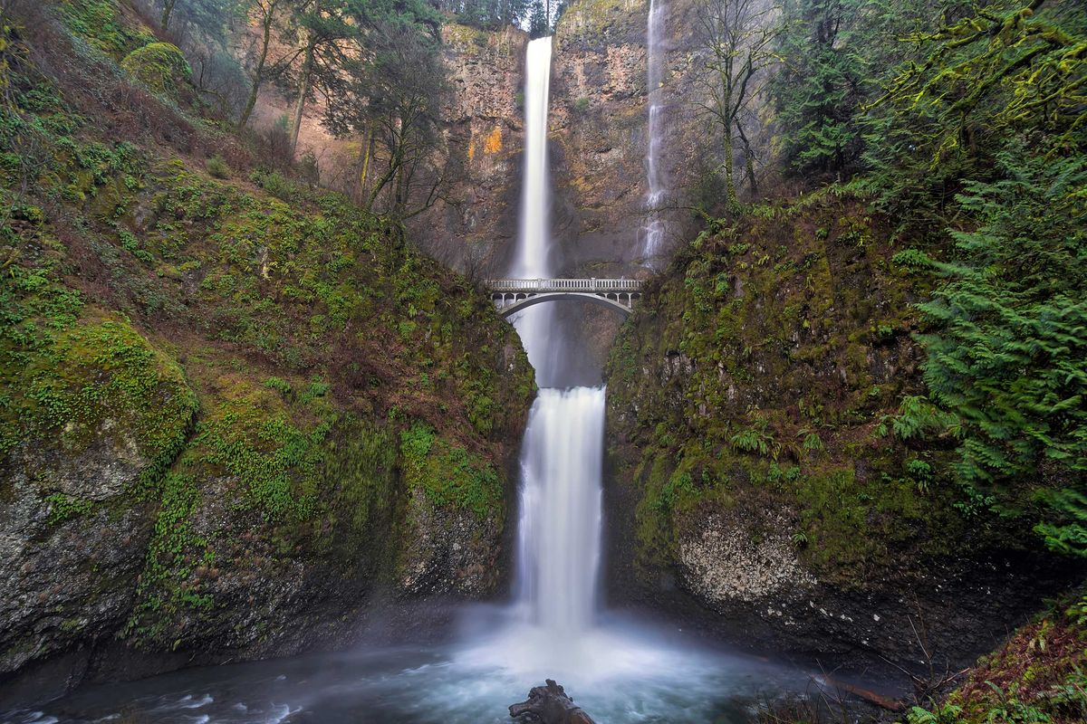 Slide 38 of 51: Multnomah FallsSpanning two tiers of basalt cliffs, Multnomah Falls located in the Columbia River Gorge, is the tallest waterfall in Oregon at 620 feet tall. Adjacent to the falls is a pathway, viewing bridge and lodge which was constructed in 1925.