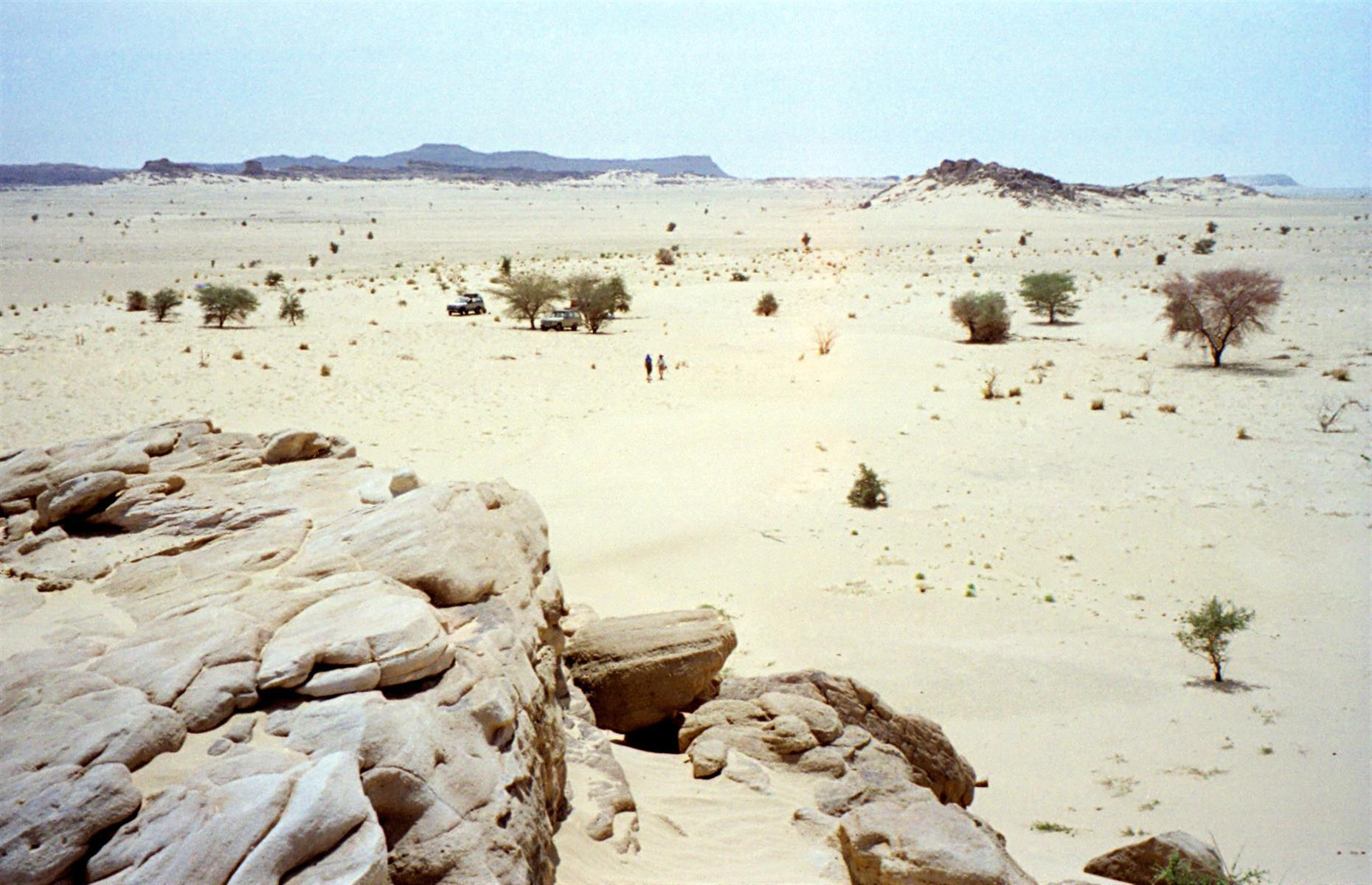 Slide 32 of 53: Ténéré within the Sahara Desert is a vast stretch of sand that extends from northeastern Niger into western Chad. It is the largest protected area in Africa at 7,736,000 hectares. The natural reserves are home to an array of plants and animals, including three threatened species of antelopes. The site was inscribed on the danger list in 1992 for a variety of reasons including political instability, poaching and illegal grazing.
