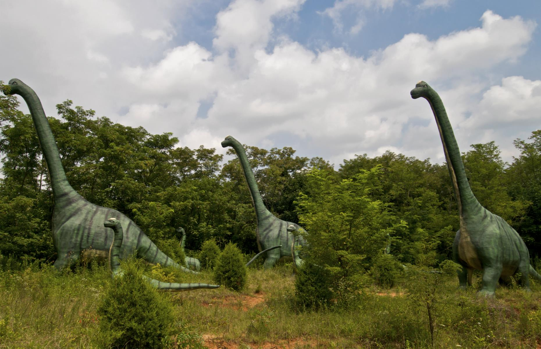 Slide 24 of 33: A giant T-Rex beckons road-trippers to pull into Dinosaur World, off the I-65 near Mammoth Cave National Park. Or, perhaps, spurs them on to drive on by in fear. This Jurassic Park–like roadside attraction is home to 150 dino sculptures scattered among the grounds and sometimes peeping above the trees. There's also a museum displaying dinosaur claws, bones and eggs. Find the most beautiful road trip in your state.