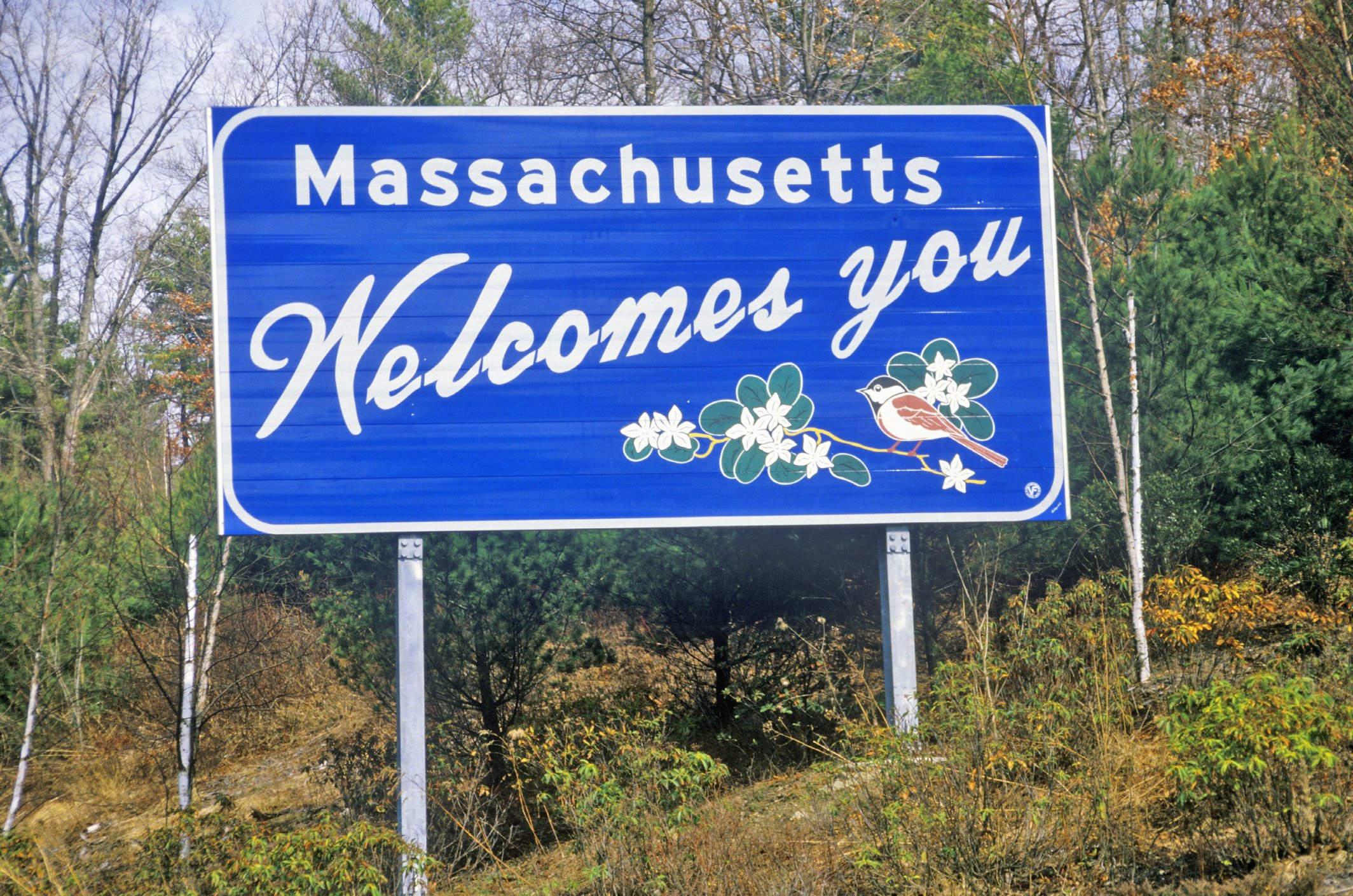 Slide 22 of 51: The Massachusetts sign showcases a chickadee and a mayflower, both icons of the state.