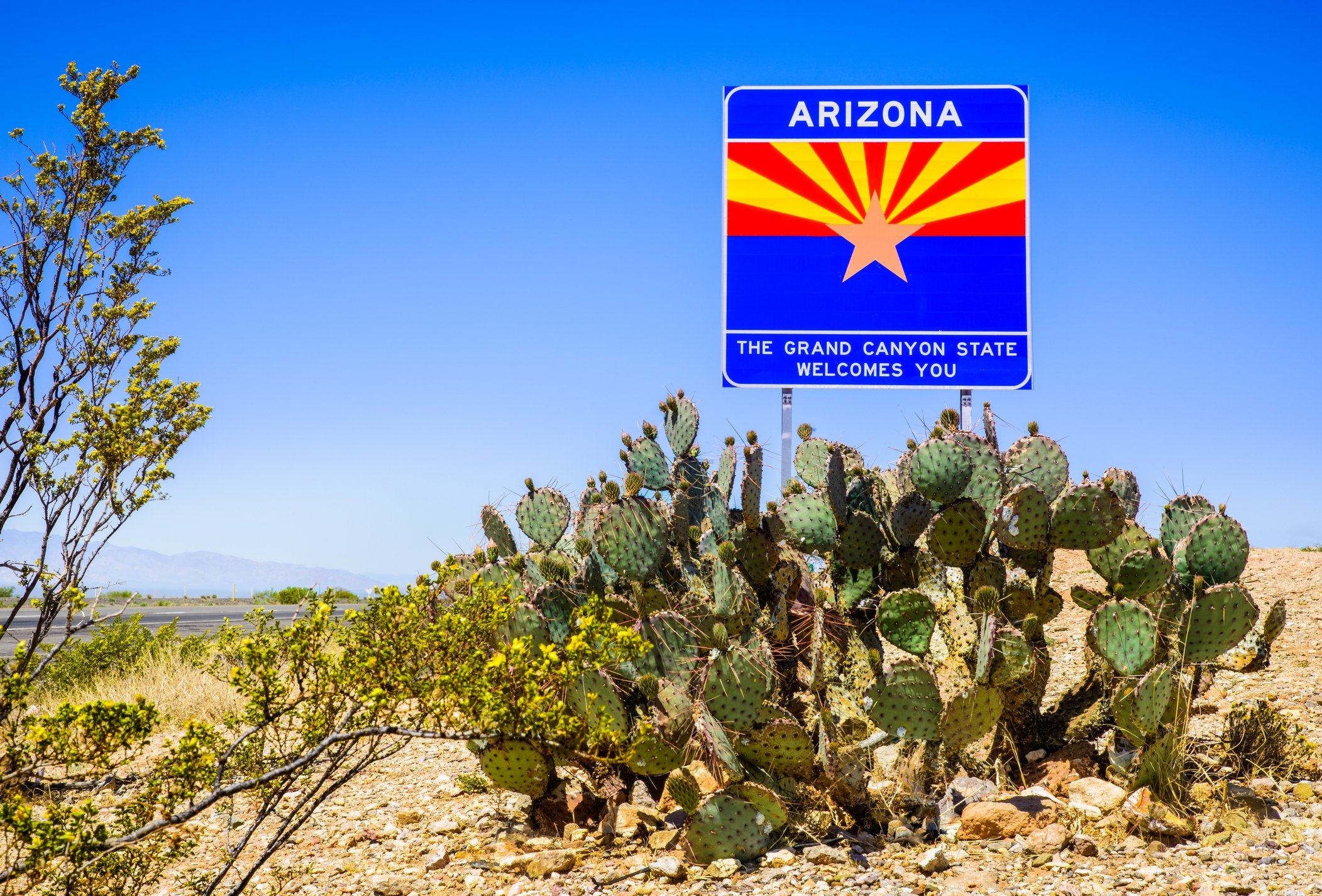 Slide 4 of 51: The Arizona sign is beautiful and bold, just like its most iconic landmark, the Grand Canyon. The Grand Canyon is just one of the national parks around the country that allow you to bring your dog, too.