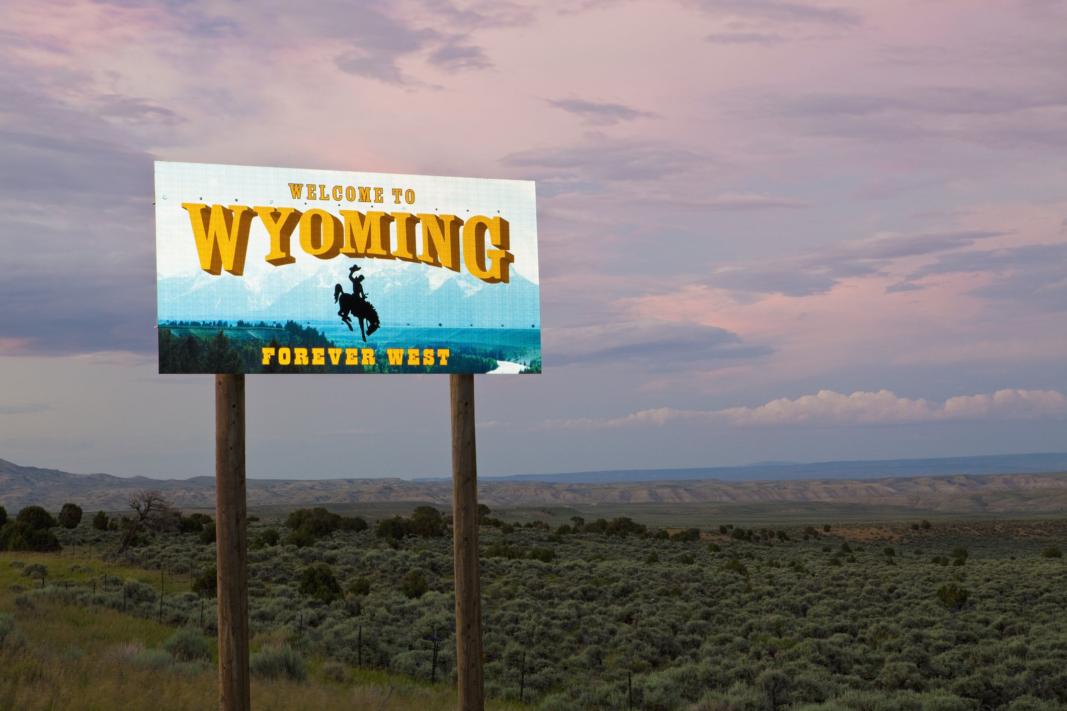 Slide 51 of 51: The sign for Wyoming changes the most frequently along with the state license plate, so don't get used to this image for too long! Next, check out the strangest roadside attraction in every state.