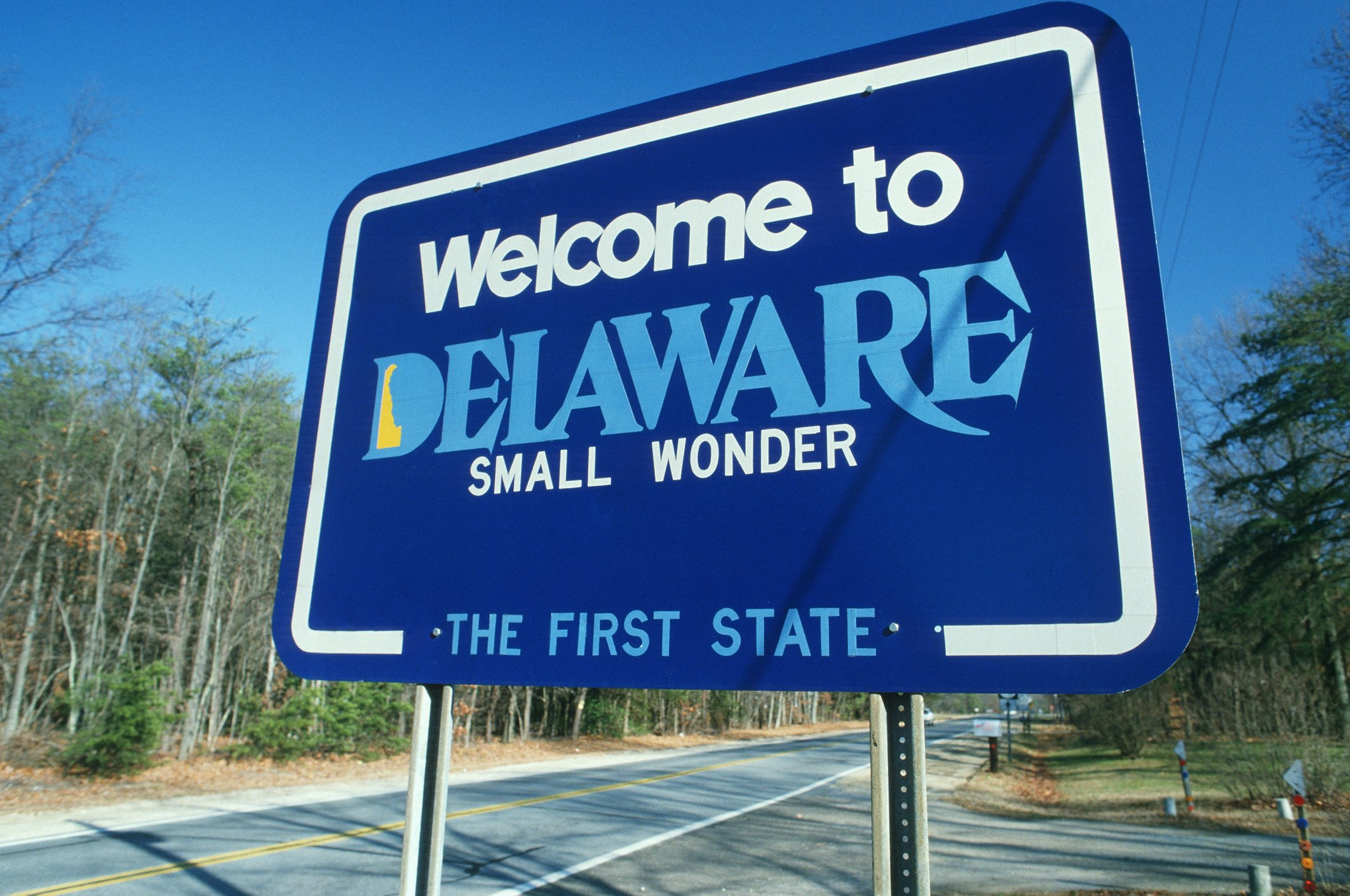 Slide 9 of 51: The state bug of Delaware is the ladybug, also a small wonder. Don't miss these other interesting facts about each of the 50 states.