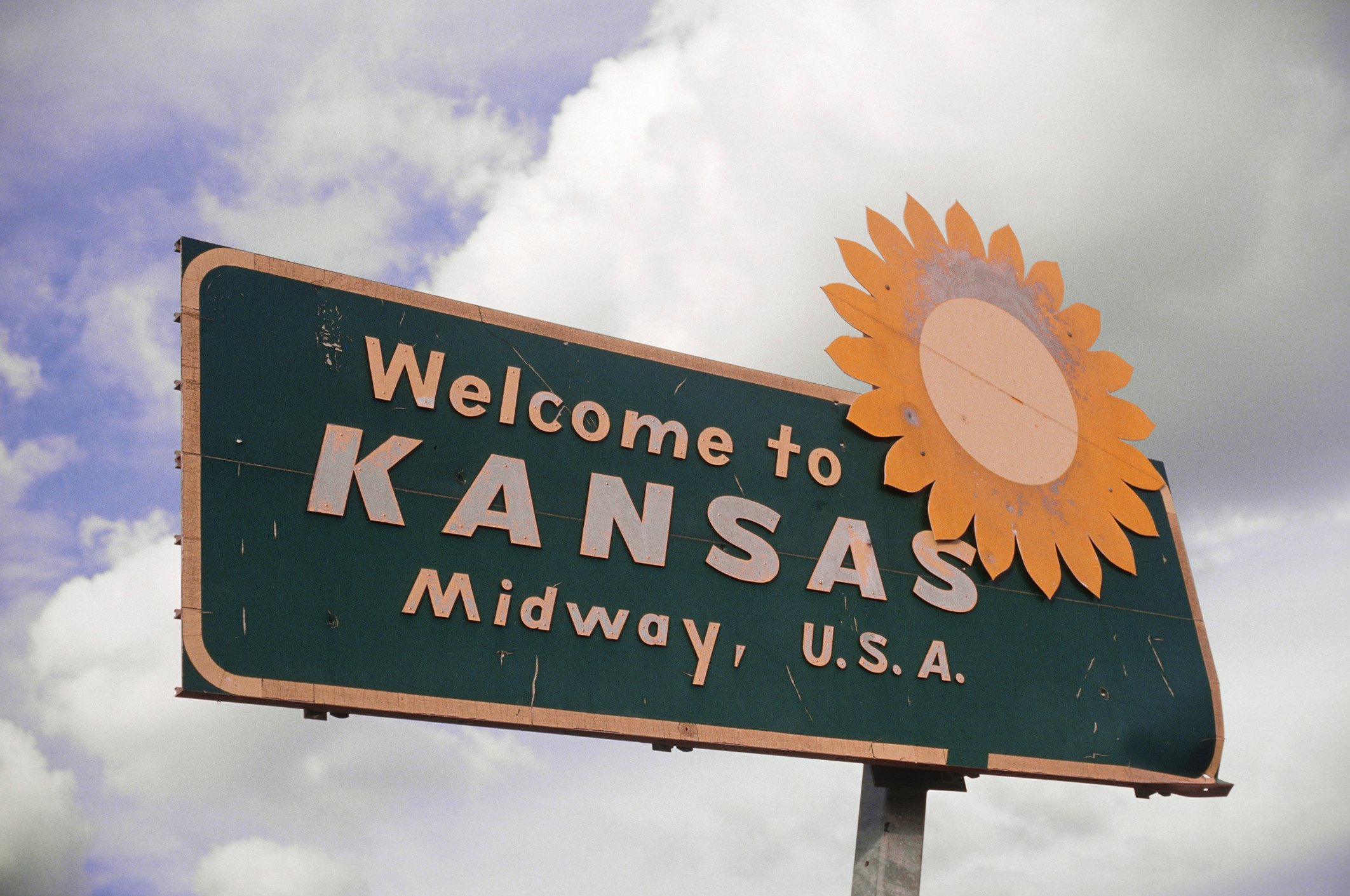 Slide 17 of 51: The official state flower for Kansas is the sunflower because of the vast sunflower fields found across the state. Here's the meaning behind every state flag.