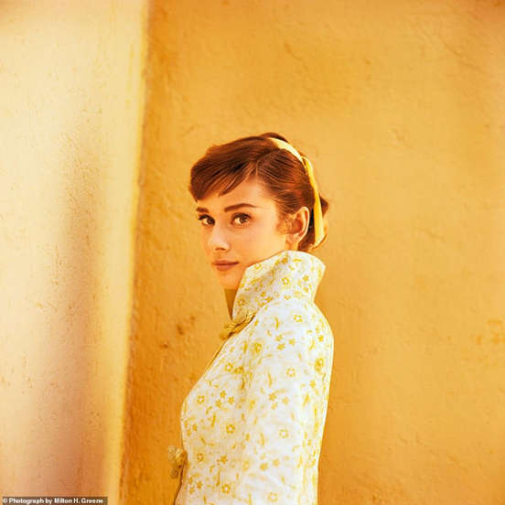 Photographers share their favorite Audrey Hepburn images