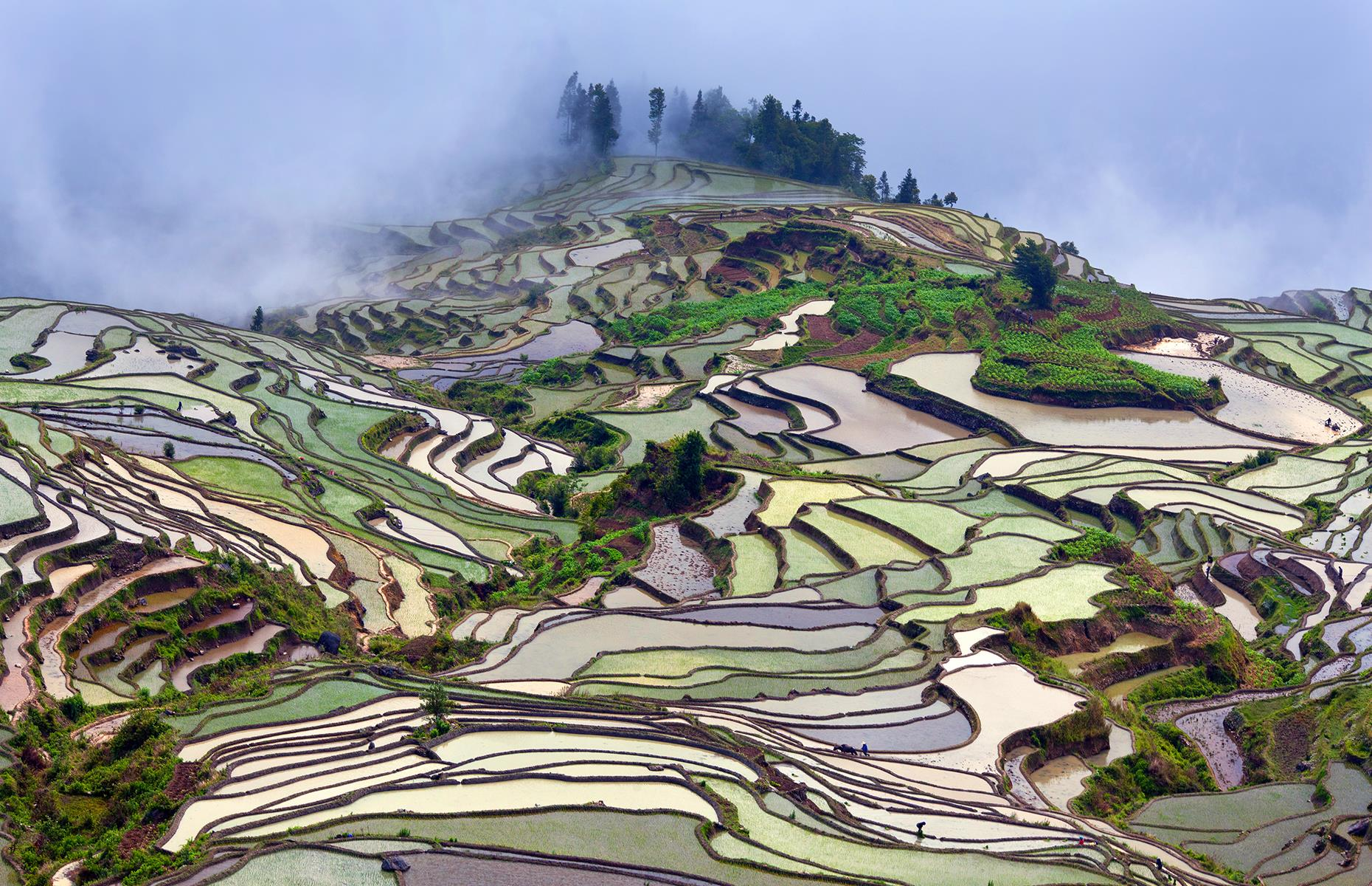 Slide 5 of 43: These vibrant rice terraces in China's Yuanyang County have been a UNESCOWorld Heritage Site since 2013 and no wonder. Built on red-soil mountains over 2,500 years ago and reaching up to 6,561 feet (1,999m)above sea level, the rice terraces fill with cascading spring water from the forests above, creating a unique scenery in shades of green and brown.