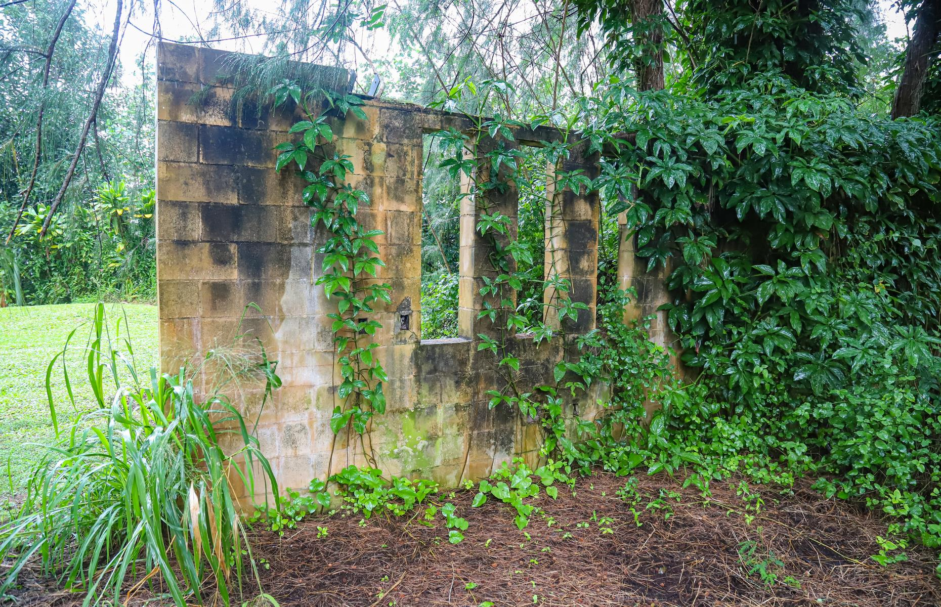 Slide 13 of 52: The eerie ruins of an old resort are tucked away above Hanalei Bay, on the north shore of The Garden Isle. Old Club Med had its glittering heyday in the Sixties and Seventies, but today all that's left is a series of weather-beaten walls and foundations shrouded by greenery. It's accessible via the verdant Old Club Med Trail.
