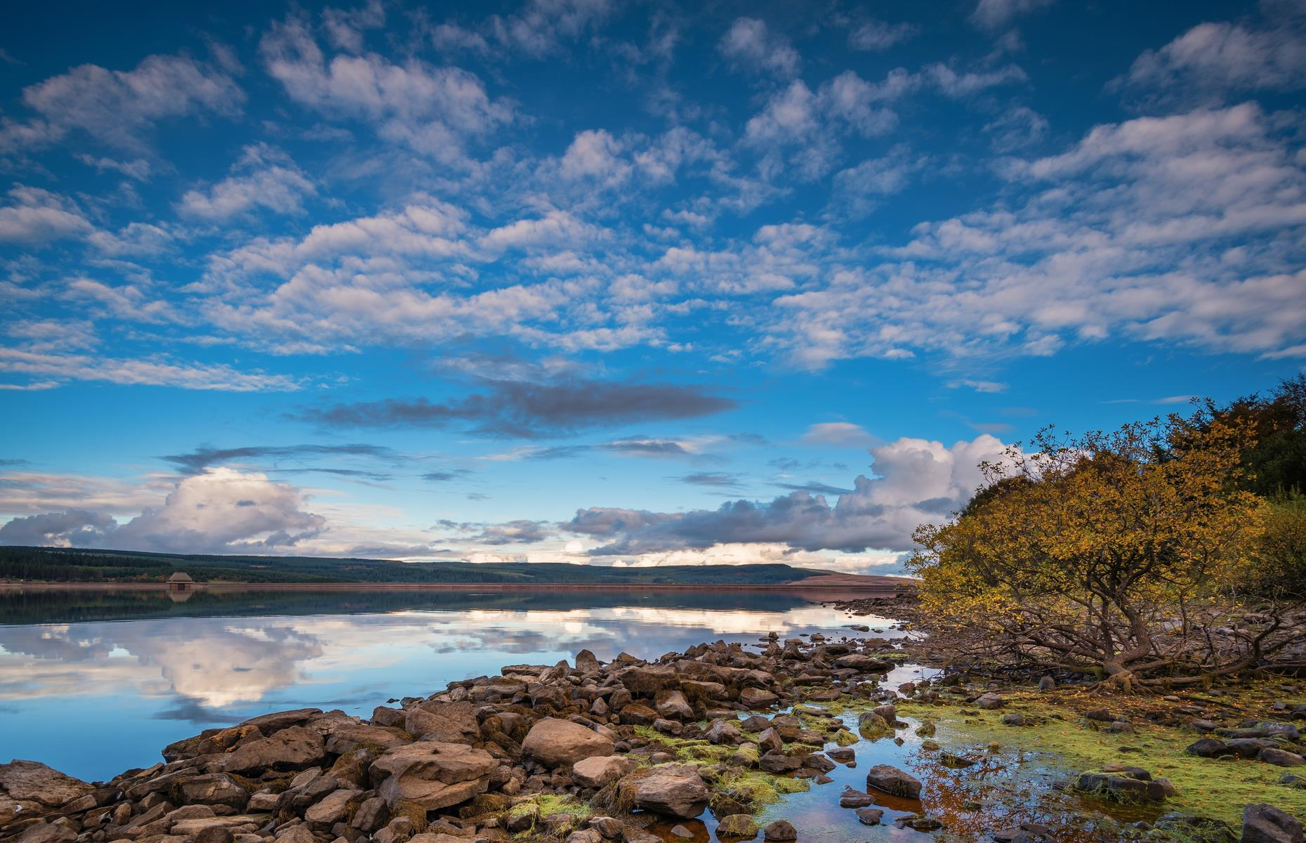 Slide 4 of 31: The biggest man-made lake in northern Europe by volume, Kielder Water in Northumberland has a 27-mile (43km) shoreline and is 170 feet (52m) at its deepest point. It's also surrounded by the largest working forest in England, at over 250 square miles (647sq km), and an important sanctuary for native species. Kielder Water & Forest Park is home to otters and the endangered water vole, which were reintroduced here in 2017. It's also the site of the largest conservation salmon hatchery in England – young salmon are raised to be released into the River Tyne.