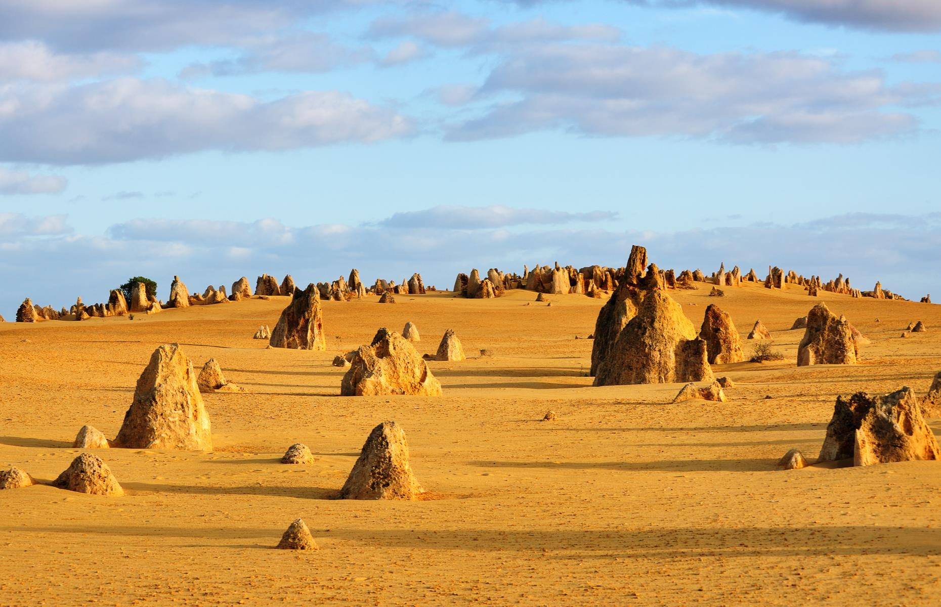 "Slide 27 of 41: Hundreds of ""pinnacles"" – natural limestone crags formed from seashells – dot the yellow desert of Nambung National Park, making the Aussie preserve look like another planet. Carved out more than 25,000 years ago, some of the forms top out at more than 11 feet (3.5m). It's not uncommon to see kangaroos hopping or emus strutting between the rocks, either."