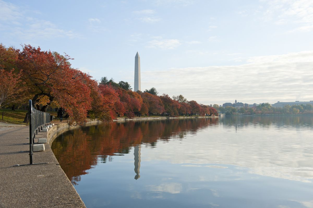 Slide 7 of 33: The colors of autumn along the National Mall in the nation's capital.
