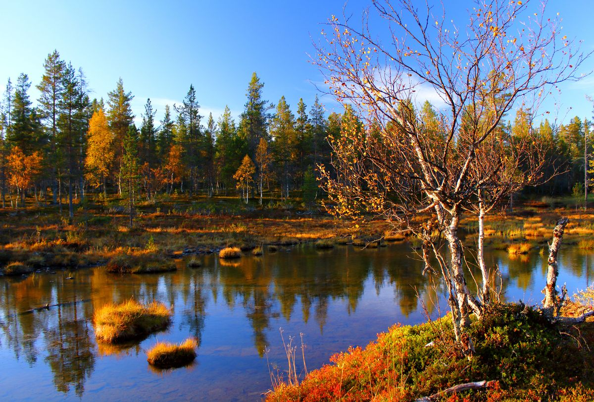 Slide 10 of 33: A sunny evening in Lapland, Finland may eventually lead to a Northern Lights sighting.
