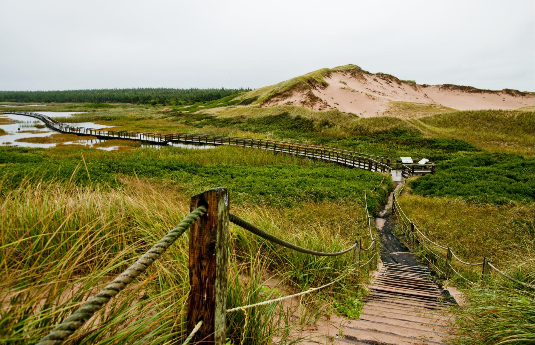 Slide 24 of 31: Located on the northern shore of PEI, Prince Edward Island National Park features a string of beaches, hiking and cycling trails. There are a staggering number of top attractions in the park, including the picturesque Greenwich sand dunes, the Dalvay-by-the-Sea National Historic Site and the famed Green Gables, home of L.M. Montgomery's fictional heroine Anne Shirley. It is also designated as an Important Bird Area and serves as a nesting ground for the endangered piping plover.