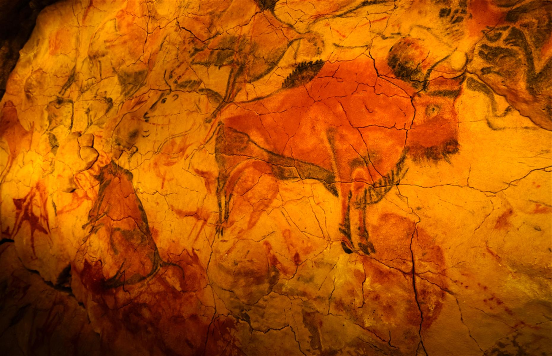 Slide 18 of 33: The 14,000-year-old bison drawings in northern Spain's Caves of Altamira are closed to crowds for similar reasons to the Lascaux Caves. Preservation is key. A maximum of six people are allowed to take the tour at each time.